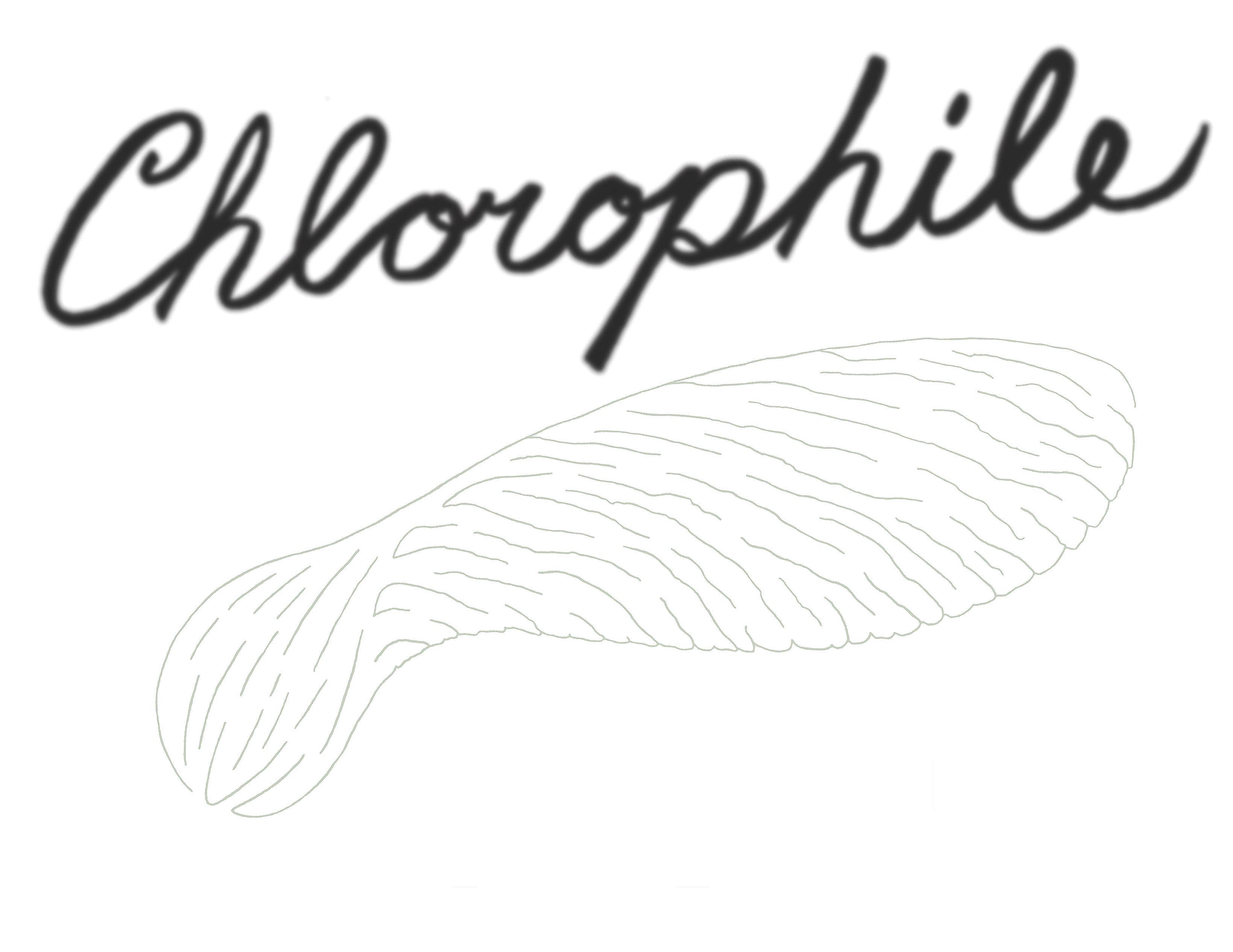 pgi6- Chlorophile